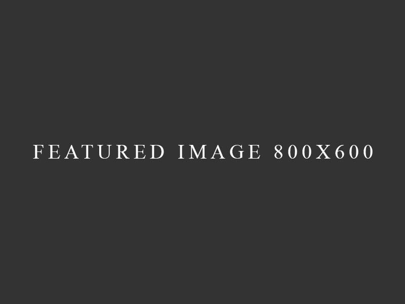 Immagine in primo piano del portfolio